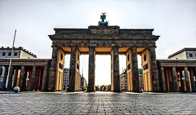 Bild Berliner Hundeführerschein