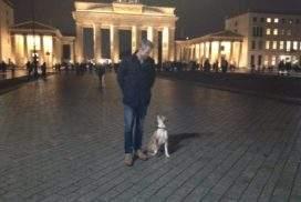 Berliner Hundeführerschein beantragen - Sachkundenachweis Berlin - Hund sitzt bei Fuß am Brandenburger Tor