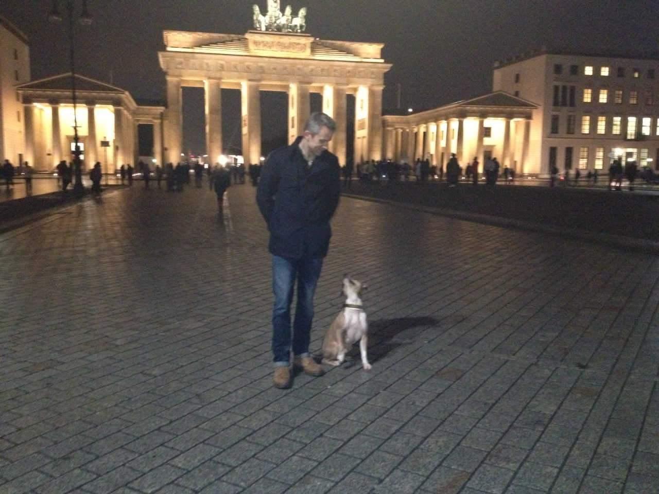Hundeführerschein_Berlin_beantragen